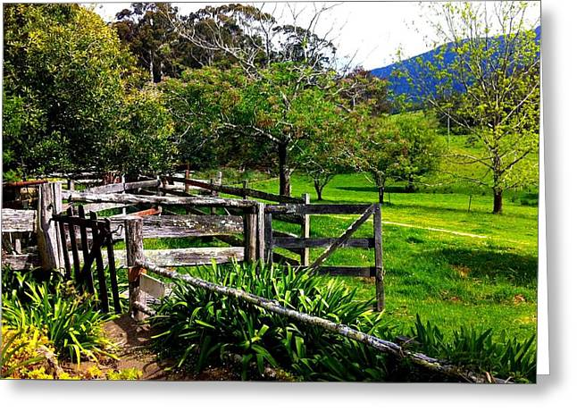 Fields And Fences Greeting Card by Marty  Cobcroft