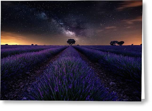 Fields Of Castilla Greeting Card