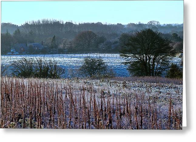 Fields Of Frost Greeting Card by Karen Grist