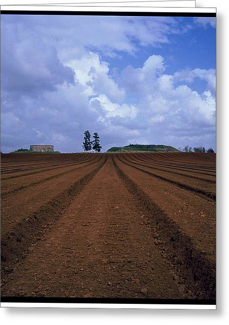 Fields Of Hod Hasharon Greeting Card by Dubi Roman