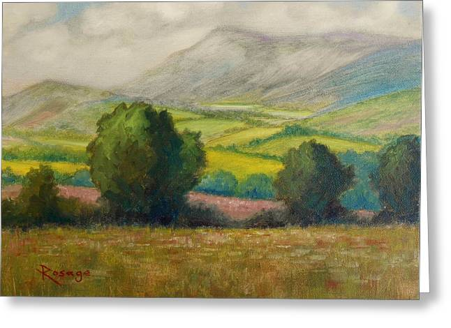 Fields Of Tipperary   Ireland Greeting Card by Bernie Rosage Jr