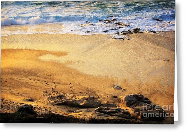 Greeting Card featuring the photograph Fiery Beach by Ellen Cotton