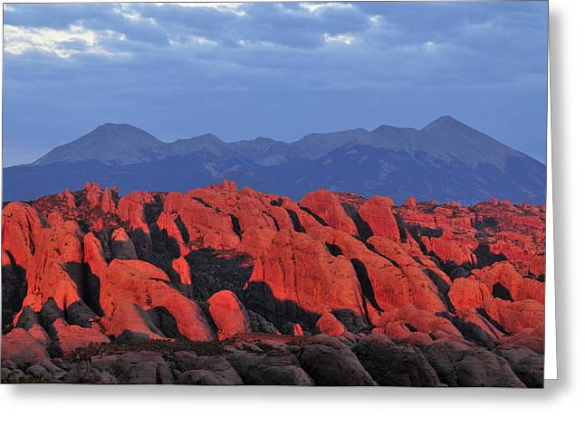 Fiery Fins Greeting Card by Joseph Rossbach