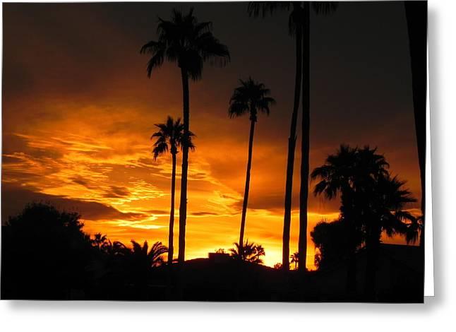 Fiery Sunset Greeting Card by Deb Halloran