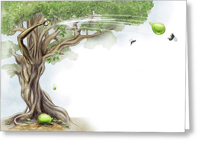 Fig Tree And Wasp Greeting Card