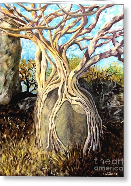 Fig Tree Greeting Card by Caroline Street