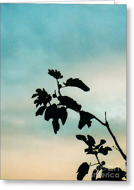 Fig Tree Greeting Card by Sarah Loft