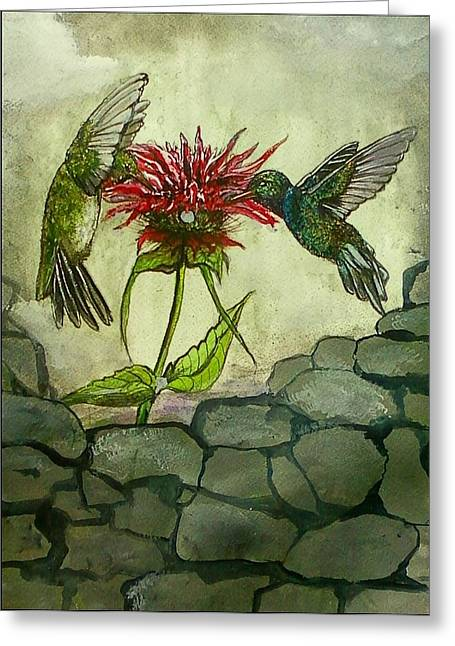 Fight Of The Hummingbirds Greeting Card
