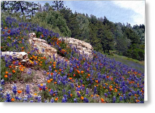 Figueroa Mountain Splendor Greeting Card by Kurt Van Wagner
