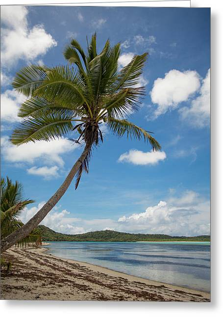 Fiji's Southern Lau Group, Island Greeting Card by Aliscia Young
