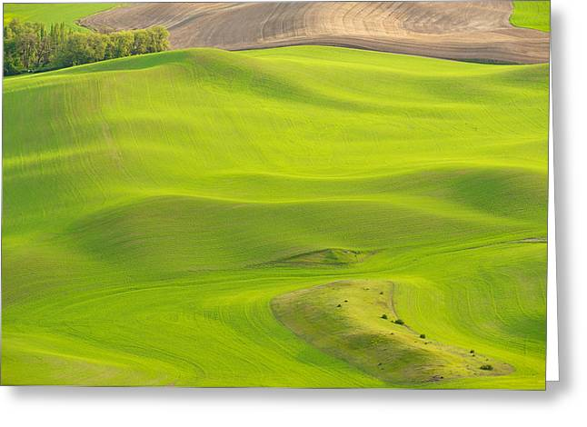 Fileds Of The Palouse Greeting Card