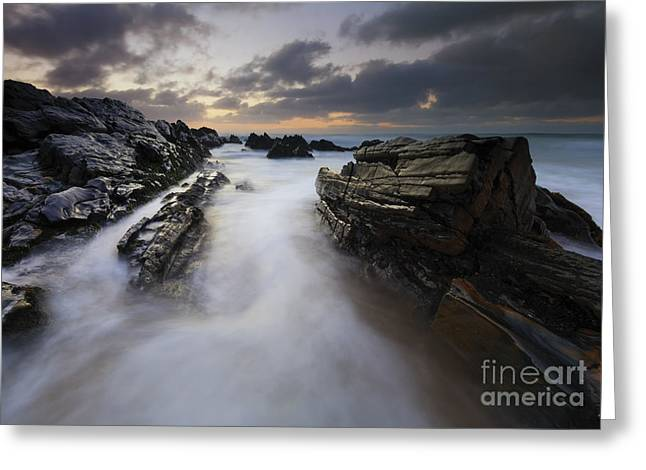 Filled By The Tides Greeting Card by Mike Dawson