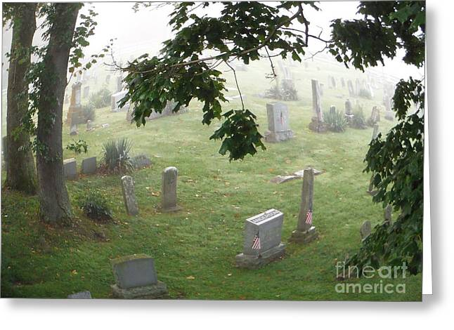 Final Resting Place Greeting Card by Paddy Shaffer