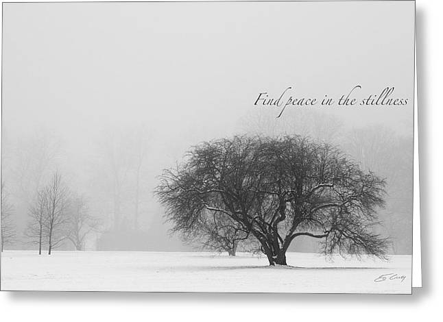Find Peace In The Stillness Greeting Card