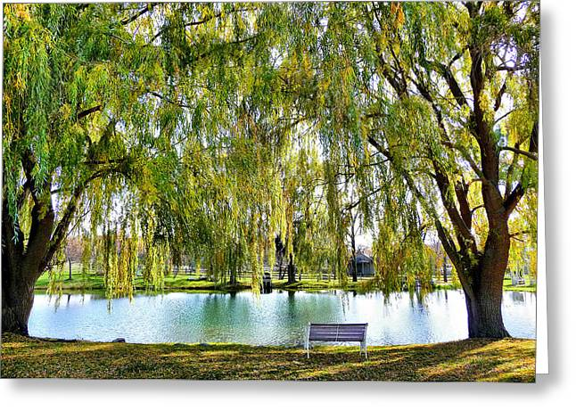 Finger Lakes Weeping Willows Greeting Card by Mitchell R Grosky