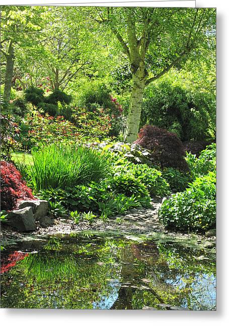 Finnerty Gardens Pond Greeting Card