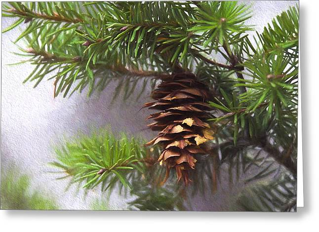 Fir Cone Digital Painting Greeting Card by Sharon Talson
