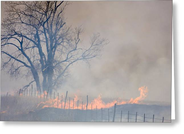 Greeting Card featuring the photograph Fire And Fence Line by Scott Bean
