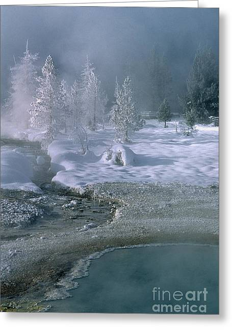 Fire And Ice - Yellowstone National Park Greeting Card