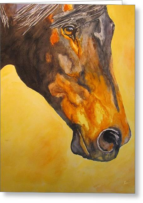 Fire Horse Greeting Card by Maris Sherwood