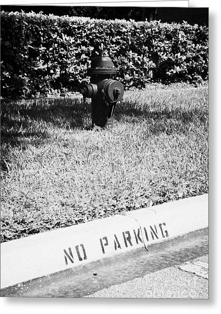 Fire Hydrant No Parking Curb In Residential Area Of Celebration Florida Usa Greeting Card by Joe Fox