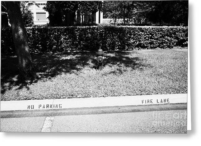 Fire Hydrant No Parking Fire Lane Curb In Residential Area Of Celebration Florida Us Greeting Card by Joe Fox