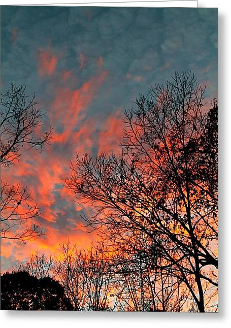 Greeting Card featuring the photograph Fire In The Sky by Candice Trimble