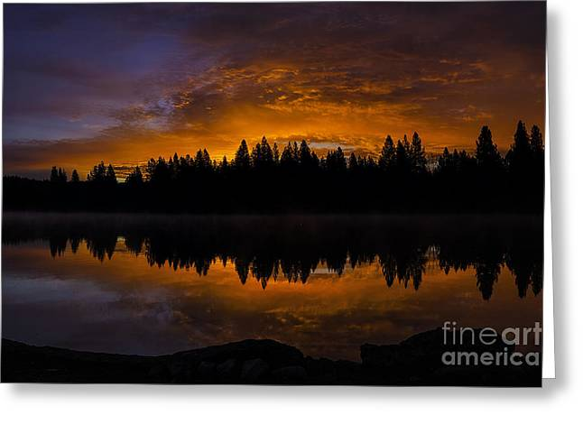 Fire In The Sky Greeting Card by Nancy Marie Ricketts