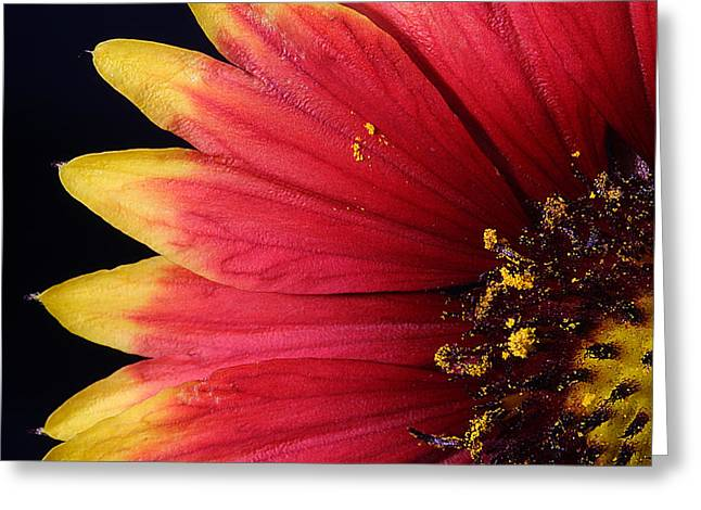 Greeting Card featuring the photograph Fire Spokes by Paul Rebmann