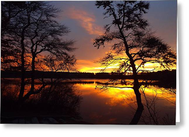 Greeting Card featuring the photograph Sunrise Fire by Dianne Cowen