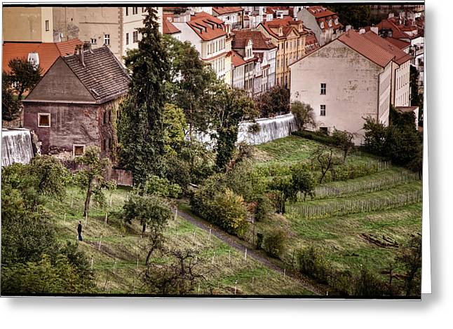 Firenze In Prague Greeting Card by Joan Carroll