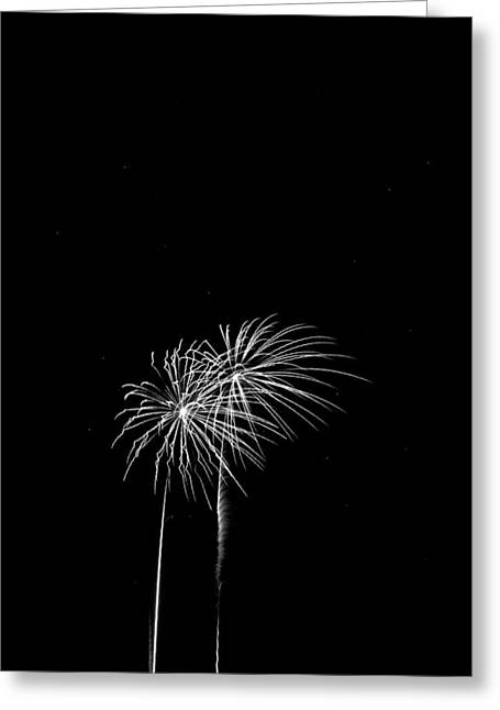 Firework Palm Trees Greeting Card by Darryl Dalton