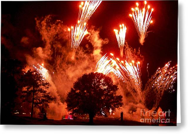 Fireworks At Epcot 1 Greeting Card