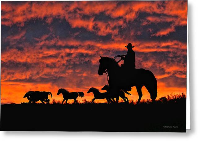 Firey Sunset Greeting Card by Stephanie Laird