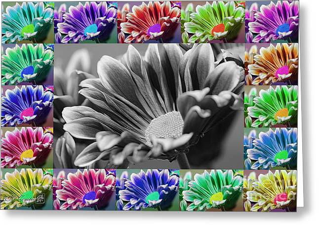 Firmenish Bicolor In All Shades Greeting Card