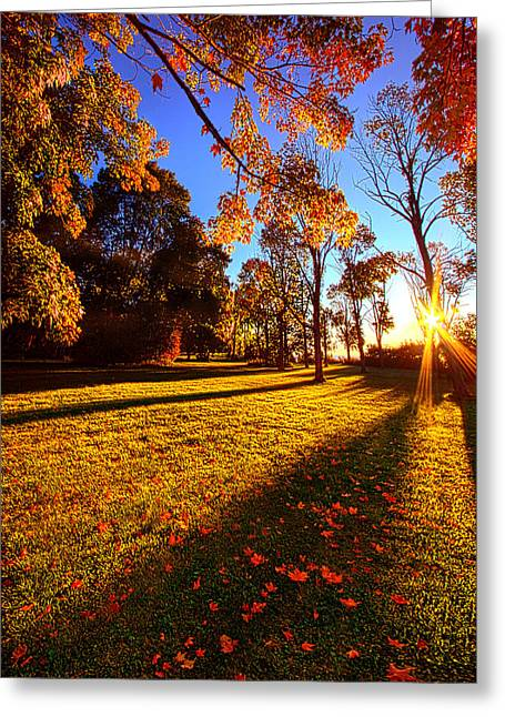 First Day Of Fall Greeting Card by Phil Koch