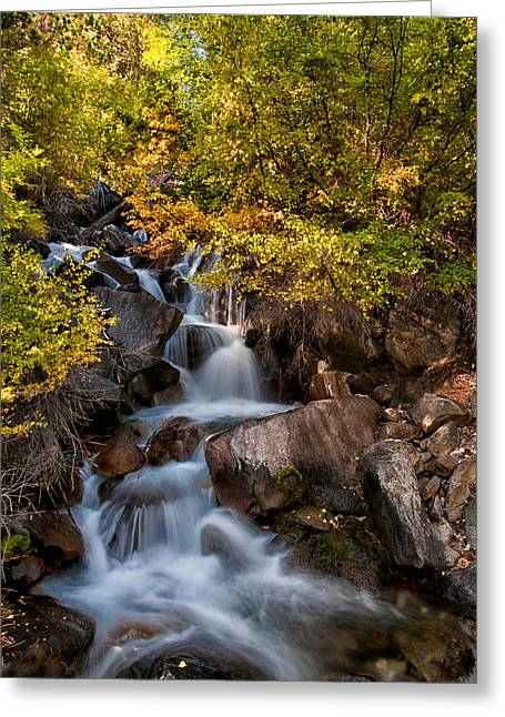 First Falls Greeting Card