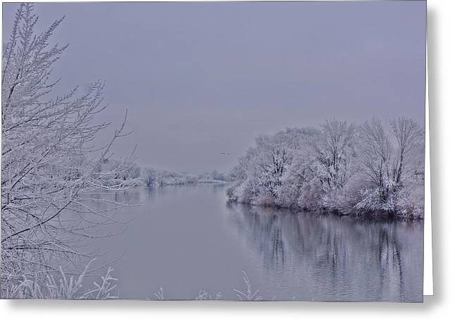 Greeting Card featuring the photograph First Frost by Lynn Hopwood