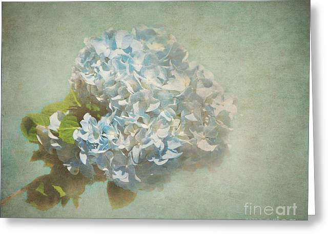 First Hydrangea - Texture Greeting Card by Bob and Nancy Kendrick