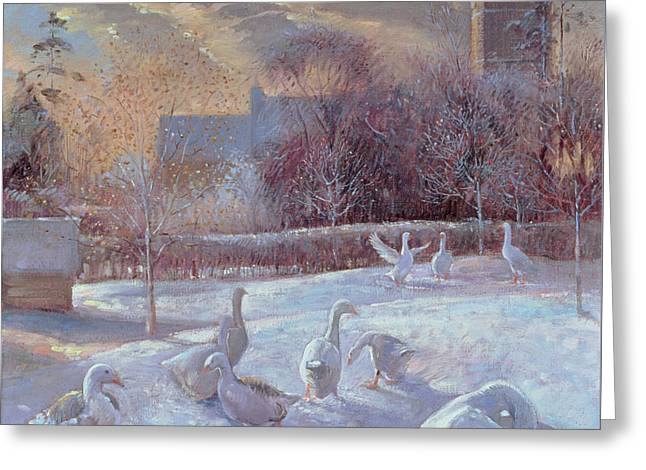 First Light Greeting Card by Timothy Easton