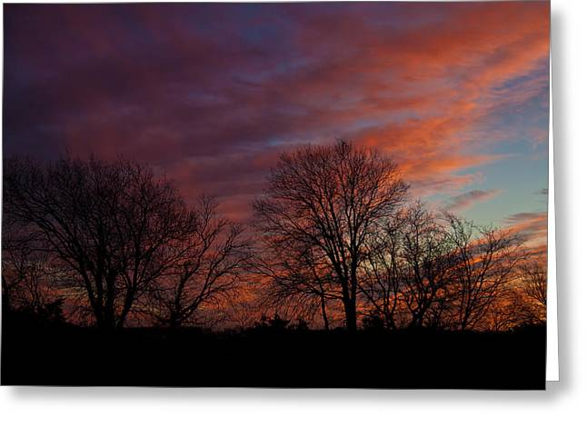 First Light Greeting Card by Mark Alder