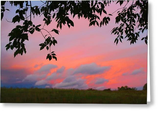 Greeting Card featuring the photograph First October Sunset by Kathryn Meyer