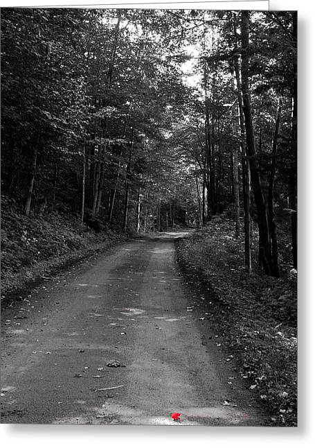 First Signs Of Fall On Rondaxe Road Greeting Card by David Patterson