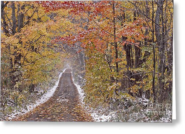 Greeting Card featuring the photograph First Snow by Alan L Graham