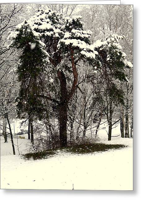 First Snow Greeting Card by Henryk Gorecki