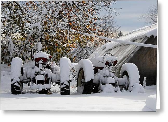 First Snow Greeting Card by JoAnn Lense