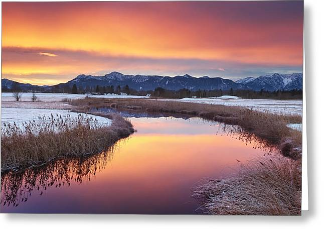 First Snow Greeting Card by Michael Breitung