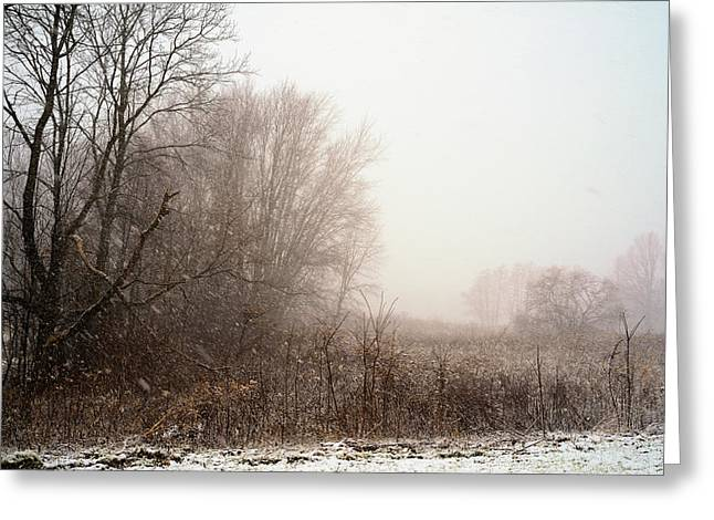 First Snow Of Winter Greeting Card by Dick Wood
