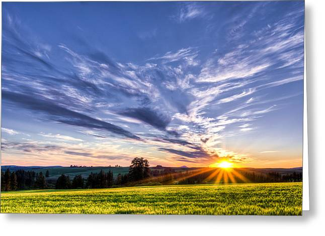 First Summer Day Greeting Card