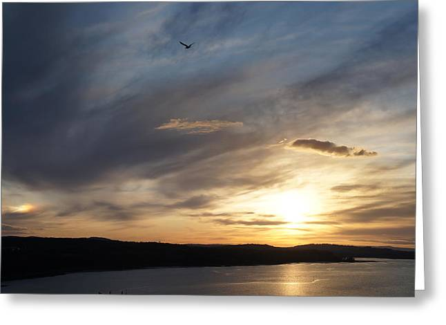 Firth Of Forth In The Sunset Greeting Card